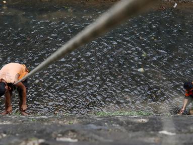Petugas UPK Badan Air Dinas Kebersihan DKI Jakarta membersihkan rumput liar di sepanjang turap Kali Baru, Jakarta, Selasa (18/7). Kegiatan rutin tersebut merupakan upaya menjaga kebersihan sungai di Ibu Kota. (Liputan6.com/Immanuel Antonius)