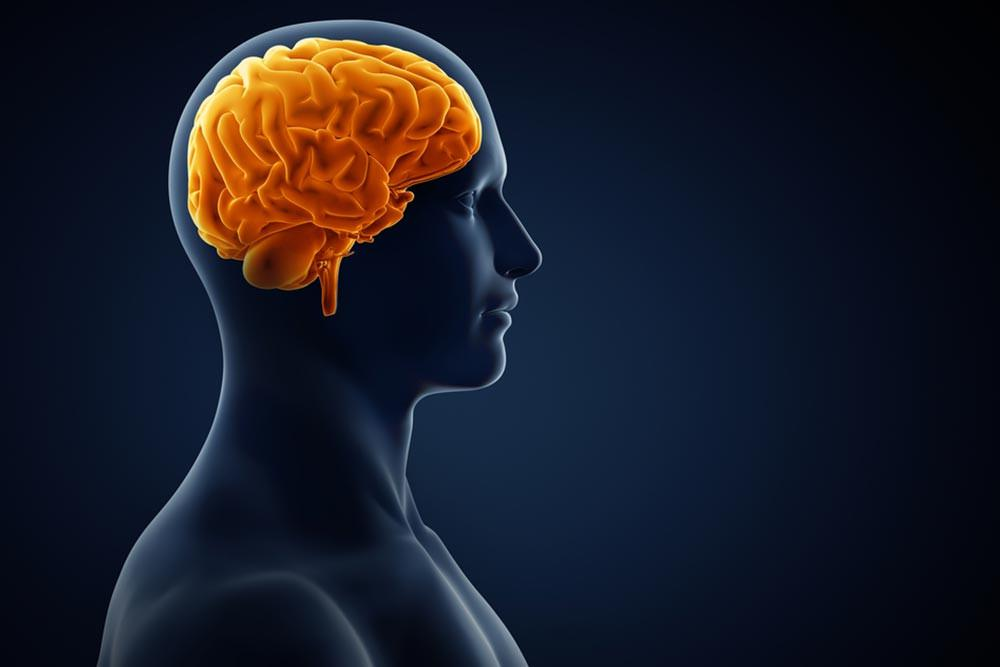 Penyebab Perdarahan Otak yang Dialami Sir Alex Ferguson (Adike/Shutterstock)