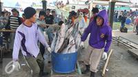 Nelayan membawa tangkapan ikan hiu hasil melaut ke pelelangan ikan, Karangsong, Indramayu, Jawa Barat, Kamis (16/6/2015). Meski sudah ada larangan perburuan dan perdagangan, nelayan setempat masih memperdagangkan sirip hiu. (Liputan6.com/Herman Zakharia)