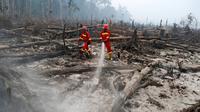 Petugas pemadam kebakaran berusaha mematikan sisa titik api yang masih menyala di cagar alam biosfer Giam Siak Kecil di Riau (3/9/2015). Kebakaran hutan dan lahan di Riau dipastikan masih akan berlangsung lama. (AFP PHOTO/ALFACHROZIE)