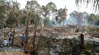 Pemukiman Suku Baduy Luar terbakar kemarin malam. (Liputan6.com/Yandhi Deslatama).