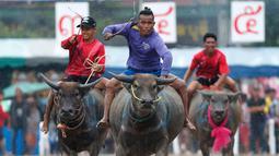 Sejumlah joki saat bersaing pada festival lomba balap kerbau di Chonburi, Bangkok, Thailand  (16/7). Festival tahunan di Thailand ini merupakan tradisi untuk menyambut datangnya musim panen padi. (AP Photo/Sakchai Lalit)