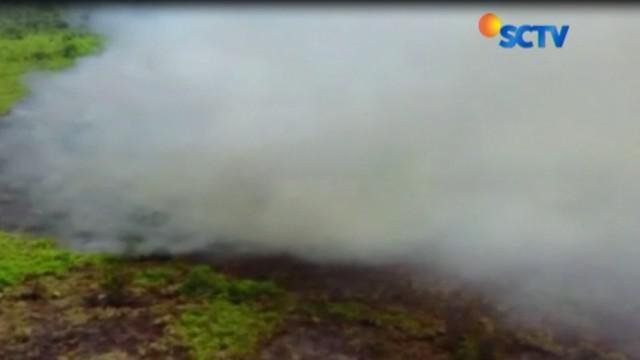 Meluasnya kebakaran lahan di 10 kabupaten dan kota, Status siaga darurat telah diumumkan secara resmi.