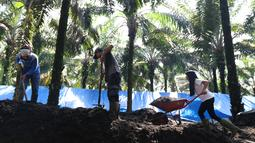 Pekerja dari kelompok tani mekar jaya binaan PT Wirakarya Sakti unit forestry APP Sinarmas menyelesaikan pembuatan pupuk kompos di Kab Tanjung Jabnung Barat, Provinsi Jambi, Kamis (3/5). (Liputan6.com/Angga Yuniar)