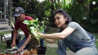Yuni Shara rajin merawat tanaman-tanaman hias di rumahnya dan sering mengobrol dengan tanaman (Dok. YouTube/ Yuni Shara Channel)