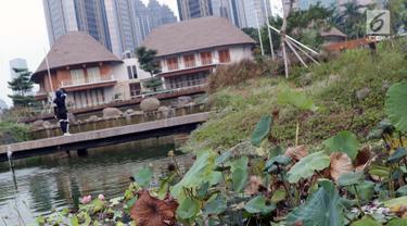 Kondisi pohon bunga yang ada di kolam Hutan Kota GBK, Jakarta, Selasa (2/7/2019). Kurangnya perawatan berakibat rusaknya beberapa tanaman yang ada di area Hutan Kota GBK. (Liputan6.com/Helmi Fithriansyah)