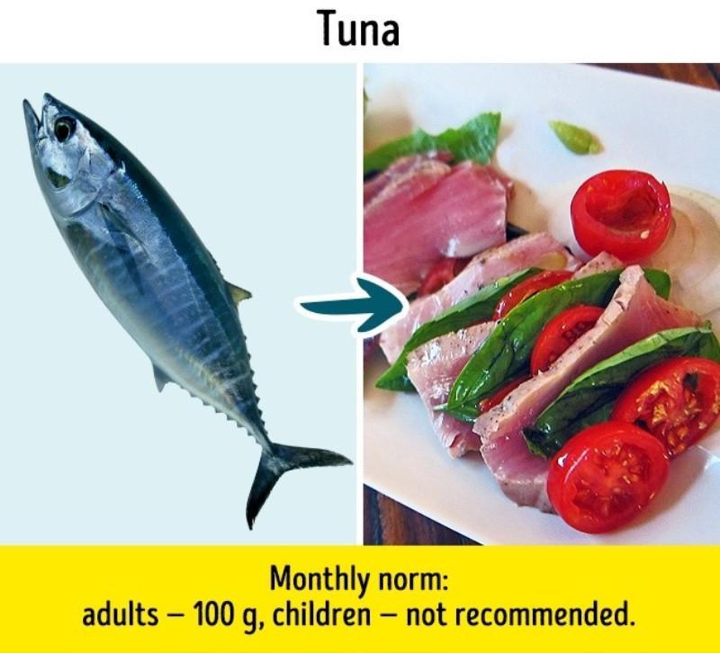 6 Jenis Ikan yang Sebaiknya Tak Kamu Makan Meski Umum di ...