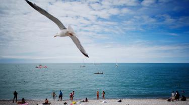 Seekor burung camar terbang di atas para pengunjung pantai di Etretat, Prancis barat laut (17/7). Kota ini merupakan kota wisata dan pertanian yang terletak sejauh 32 km (20 mi) dari Le Havre. (AFP Photo/Charly Triballeau)