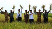 Diperkiraan untuk luas panen di Provinsi Kalimantan Selatan pada Januari dan April 2019 mendatang mencapai 108.166 hektare.