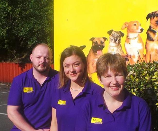 Staf petugas di rumah penampungan anjing Dogs Trust   Photo: Copyright dogstrust.org.uk