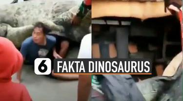 Ternyata ini dia fakta tentang dinosaurus di Magetan yang sempat viral di media sosial.