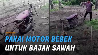 VIDEO: Kreatif, Petani Pakai Motor Bebek Untuk Bajak Sawah