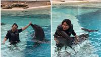 Intim dengan lumba-lumba di Dolphin Island Resorts World Sentosa, Singapura (Liputan6.com/Pool/Istimewa)