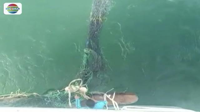 Tim gabungan kembali cari korban KM Sinar Bangun dengan menarik jaring, yang sebelunya ditinggalkan di lokasi bangkai kapal, menggunakan dua kapal feri.