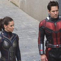 Evangeline Lily dan Paul Rudd di film Ant-Man and the Wasp. foto:  Sciencefiction.com