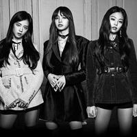 Rencana comeback BLACKPINK dilaporkan akan tertunda karena merebaknya virus Corona di Korea.
