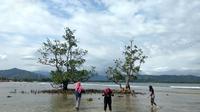 Pesona Pantai Batu Kalang Pesisir Selatan, Sumatera Barat. (Foto:Liputan6.com/ Novia Harlina)