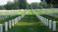 Ilustrasi meninggal, kematian, makam, kuburan. (Photo by Quick PS on Unsplash)
