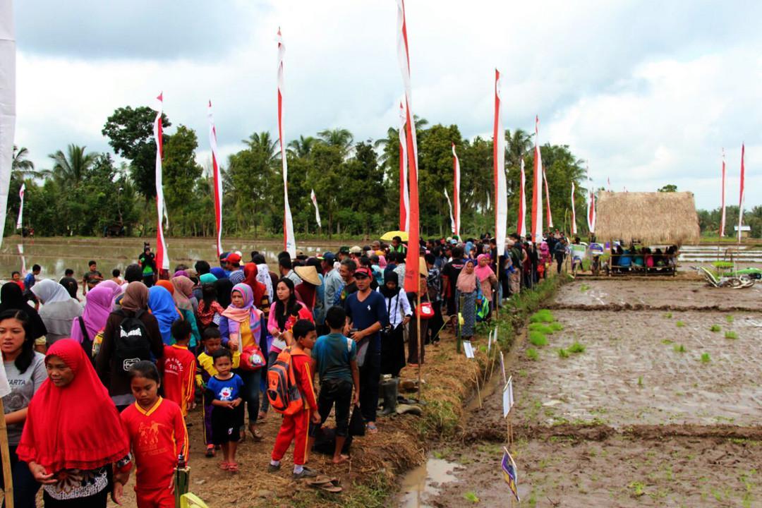 Ratusan anak turut memeriahkan acara Makarya Tani di Dusun Pertapan, Desa Sragi, Kecamatan Songgon, Banyuwangi, Jatim. (Foto: Humas Pemkab Banyuwangi/Liputan6.com/Dian Kurniawan)