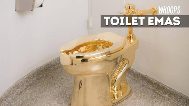 Untuk merasakan sensasi memakai toilet ini, anda cukup harus membayar tiket masuk museum saja.