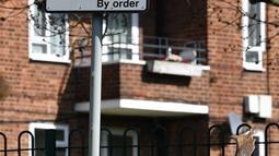 Kawanan rusa jenis fallow (Dama dama) mencari rumput di depan halaman perumahan di Harold Hill, London, 4 April 2020. Rusa yang diyakini berasal dari Taman Dagnam itu kini berada di dekat area perumahan yang sepi saat Inggris memberlakukan lockdwon selama pandemic corona Covid-19. (Ben STANSALL/AFP)