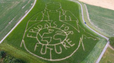 Pandangan udara memperlihatkan labirin dengan potret aktivis iklim Swedia Greta Thunberg menghiasi ladang jagung di Selm, Jerman, Rabu (10/7/2019). Dalam labirin tersebut juga terdapat pesan bertulis 'fridays for future'. (INA FASSBENDER/AFP)