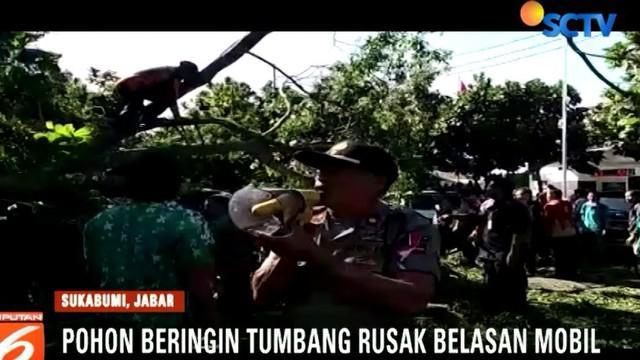 Walikota Sukabumi Muhamad Muraz akan mendata kembali pohon besar yang rawan tumbang untuk mencegah hal serupa.
