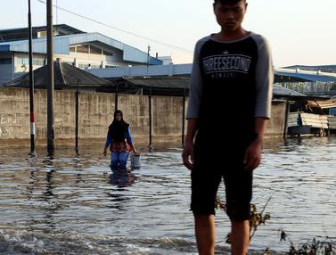Banjir Rob Muara Baru