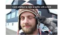 Momen Apes saat Selfie dengan Binatang (Sumber: Brightside)