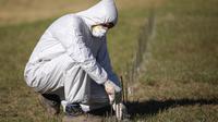Pekerja menandai area di mana kuburan baru akan digali di pemakaman San Vicente di Cordoba, Argentina, 14 April 2020. Pemerintah kota di provinsi Argentina tengah, Cordoba telah menggali sekitar 250 kuburan untuk mengantisipasi peningkatan korban jiwa dari pandemi Covid-19. (AP/Nicolas Aguilera)