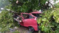 Arifin (43), menjadi korban angin puting beliung. Mobil Daihatsu Zebra yang dikemudikannya ringsek tertimpa pohon tumbang di Jalan Siliwangi, Kota Bogor, Kamis (6/12/2018) sore.