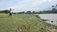 Seorang warga memotret buaya berkalung ban yang sedang berjemur di tepi Sungai Palu. BKSDA Sulteng melarang aksi tersebut karena berbahaya. (Foto: Heri Susanto/ Liputan6.com).