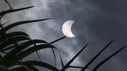 Penampakan gerhana matahari cincin di Bangkok, Thailand, Kamis (26/12/2019). Gerhana matahari cincin ini dapat diamati dari sejumlah wilayah mulai dari Afrika timur, seluruh Asia, Samudera India, dan Australia utara. (Lillian SUWANRUMPHA/AFP)