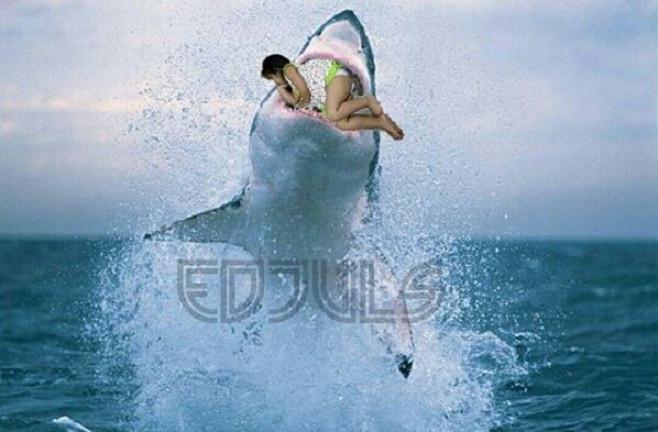 (Foto: Brilio.net) Editan foto dengan hiu.