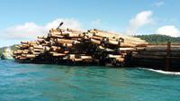 Pengawasan tersebut dilakukan untuk menghindari terjadinya penyelundupan ekspor kayu log ilegal ke luar negeri.
