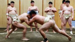 Dua pemuda Jepang berduel selama berlatih sumo di klub gulat Sumo Nippon Sports Science University di Tokyo, Jepang (20/5/2019). (Reuters/Issei Kato)