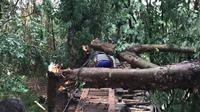 Puting beliung terjadi di dua kecamatan di Karawang, Jawa Barat. (Foto: Liputan6.com/Abramena).