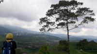 Kebun Teh Bukit Kemuning menawarkan pemandangan indah dengan udara yang sejuk (Liputan6.com / Nefri Inge)