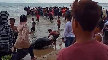 Evakuasi kapal terbalik di Konawe Utara. (Foto: Liputan6.com/Ahmad Akbar Fua)