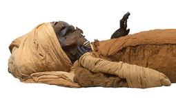 Gambar selebaran yang dirilis oleh Kementerian Pariwisata dan Purbakala Mesir pada 17 Februari 2021 menunjukkan penampakan mumi raja Mesir kuno Seqenenre Taa II. Jurnal Frontiers of Medicine menjelaskan sebab kematian firaun berusia lebih dari 3.600 tahun ini. (Egyptian Ministry of Antiquities/AFP)