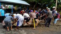 Sempat terjadi kehebohan saat sapi kurban Presiden Jokowi memberontak ketika akan disembelih (Liputan6.com/Yuliardi Hardjo)