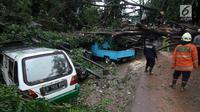 Sejumlah mobil tertimpa pohon akibat Hujan dan Angin di wiliyah Serua, Ciputat, Rabu (12/12). Hujan beserta angin yang mengguyur sejumlah wilayah kota Tangerang Selatan membuat pohon besar tumbang menimpa mobil. (merdeka.com/ arie basuki)