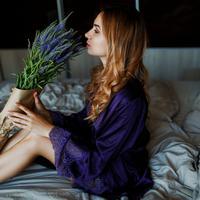 Tanaman untuk di kamar./Copyright shutterstock.com/g/Svetlana+Sokolova27