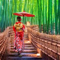 Berencana Liburan ke Jepang saat Akhir Tahun? Jangan Lewatkan 5 Hal Ini