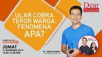 Live Streaming Dear Netizen: Ular Cobra Teror Warga, Fenomena Apa? (Abdillah)