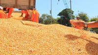Kementan berkomitmen untuk selalu memperbaiki dan meningkatkan kualitas benih.