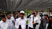 Menteri Pertanian Amran Sulaiman dalam peluncuran Program BUN 500 di Kalteng. (Liputan6.com/Athika Rahma).