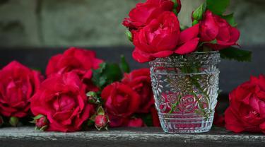 Ilustrasi bunga mawar merah (Sumber:Pixabay)
