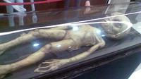 Museum alien di Diyarbakir. (Sumber Wikimedia/Hedda Gabler)
