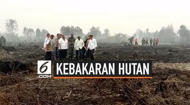 Presiden Jokowi beserta beberapa menteri meninjau lokasi kebakaran utan di Riau. Presiden mengakui seluruh petugas telah berusaha maksimal memadamkan api, namun ternyata usaha belum maksimal.